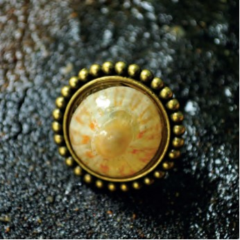 Beaded-Ring-Zinc-Alloy-Metal-Base-Casting-Resin-Cellana-Radiata