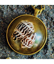 Locket-Zinc-Alloy-Metal-Base-Casting-Resin-Conus-Marmoreus